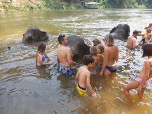 BathingElephant