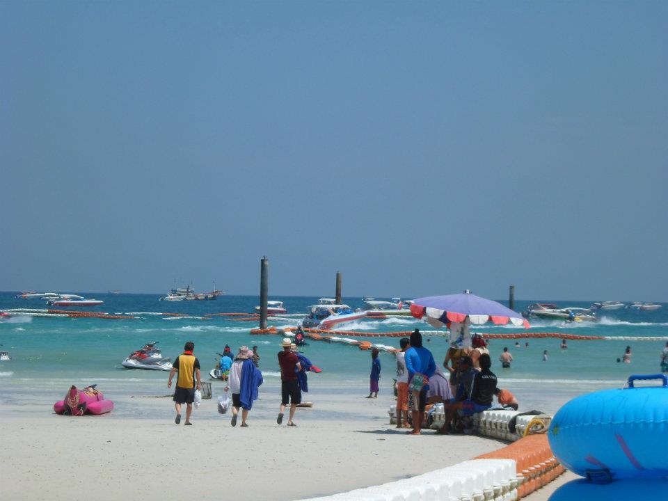 Coralisland