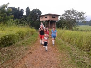 KhaoYai National Park NakhonNayok